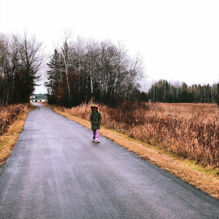Nov 4 trail1 (1)