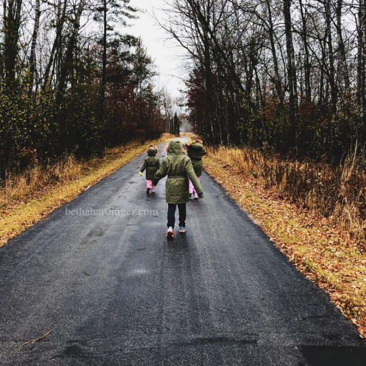 Nov 4 trail1